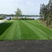 Anchorage-Lawn-Maintenance-16