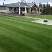 Anchorage-Lawn-Maintenance-16